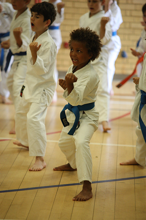 Holiday karate camps